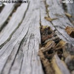 greg-baumont-wood-cd-cover-front
